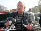 """Владимир Кольнов демонстрирует породу """"Камышинский голубь"""""""